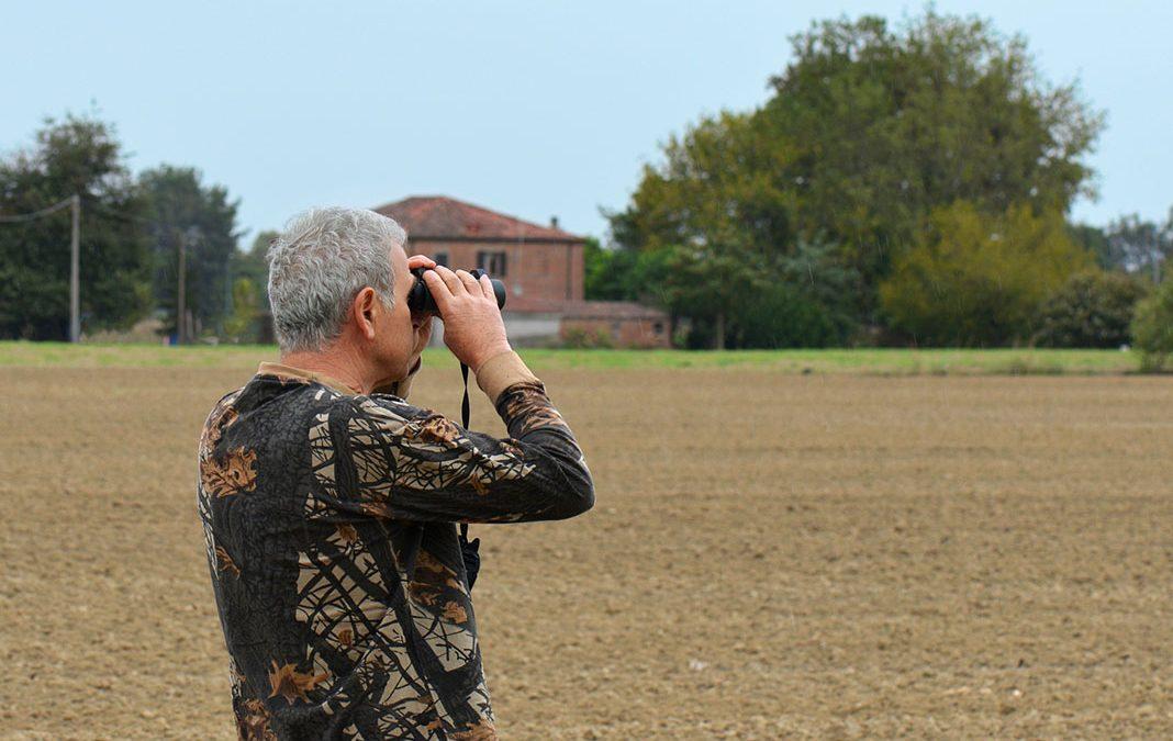 Il birdwatching: osservare la natura per capirla