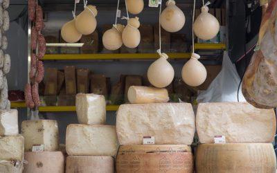 4 formaggi, dalle Alpi alle Isole, cercando sapori forti