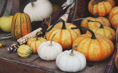 La zucca: buona, colorata e di stagione