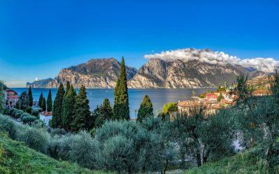 Lago di Garda, il luogo più a nord del mondo dove si produce olio d'oliva
